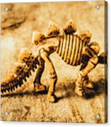 The Stegosaurus Art In Form Acrylic Print