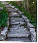 The Steps Acrylic Print