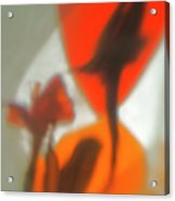 The Still Life With The Shadows Of The Flowers. Acrylic Print