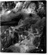 The Stream In Bw Acrylic Print