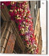The Street Lamps Acrylic Print