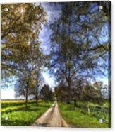 The Summer Farm Track Art Acrylic Print
