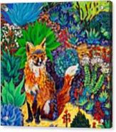 The Sun Fox Acrylic Print