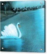 The Swan Acrylic Print