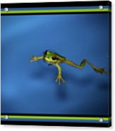 The Swimmer Acrylic Print