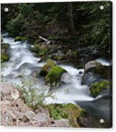 The Tananamawas Flowing Through The Forest Acrylic Print