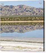 The Temblor Range Is Reflected In Soda Acrylic Print