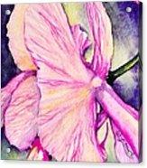 The Temptress Acrylic Print