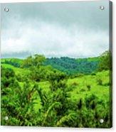 The Terrain Of Costa Rica  Acrylic Print