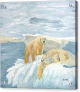 The Three Bears Acrylic Print