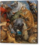 The Tiger Hunt Acrylic Print