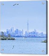 The Toronto Skyline Acrylic Print