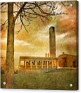 The Tree And The Bell Tower Acrylic Print