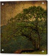 The Tree And The Range Acrylic Print