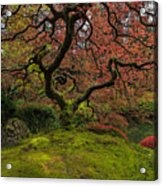 The Tree In Spring Acrylic Print