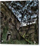 The Tree In The Fort - L'albero Tra Le Mura Del Forte Paint Acrylic Print