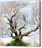 The Tree On The Top Of The Hill  Acrylic Print