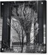The Tree Under The Bridge Acrylic Print