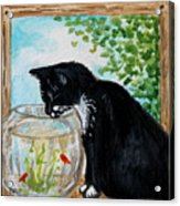 The Tuxedo Cat And The Fish Bowl Acrylic Print