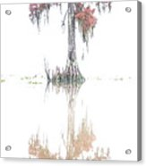 The Upside Down In Color Acrylic Print