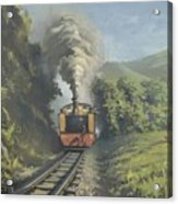 The Vale Of Rheidol Railway Acrylic Print