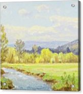 The Valley Stream Acrylic Print