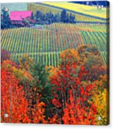 The View From Red Ridge Acrylic Print by Margaret Hood