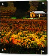 The Vines During Autumn Acrylic Print
