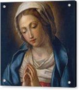 The Virgin At Prayer Acrylic Print by Il Sassoferrato