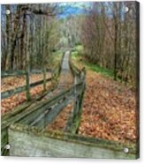 The Walk In The Woods Acrylic Print
