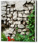 The Wall Acrylic Print