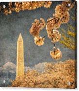 The Washington Monument Acrylic Print