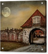 The Watcher Acrylic Print by Robin-Lee Vieira