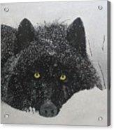 The Watcher Acrylic Print