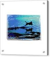 The Water Dog  2 Acrylic Print