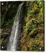 The Water Falling At The Yoro Waterfall In Gifu, Japan, November Acrylic Print