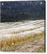 The Way To Nablus City Acrylic Print