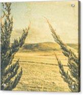 The Wayback Meadow Acrylic Print