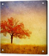 The Wednesday Tree Acrylic Print