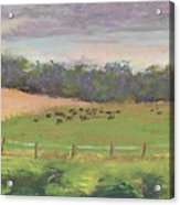 The West Cow Pasture Early Morning Acrylic Print