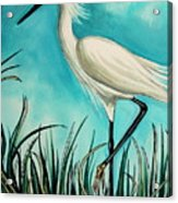 The White Egret Acrylic Print