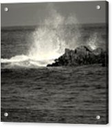 The Wild Pacific In Black And White Two Acrylic Print