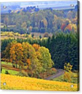 The Willamette Valley Acrylic Print by Margaret Hood