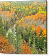 The Winding Manistee River Acrylic Print