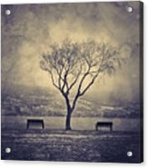 The Winter And The Benches Acrylic Print