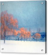 The Winter Blues Acrylic Print