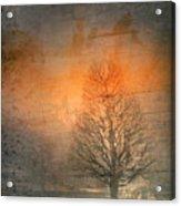 The Winter Still Acrylic Print