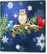 The Winter Watch Acrylic Print