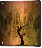 The Wishing Tree Acrylic Print by Hazel Billingsley
