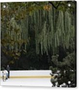 The Wollman Rink Acrylic Print
